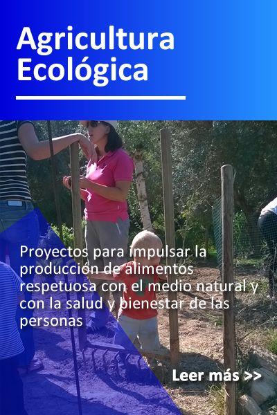 prog_agricultura