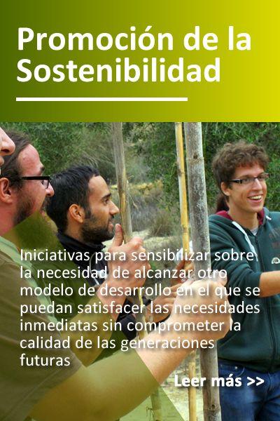 prog_sostenibilidad