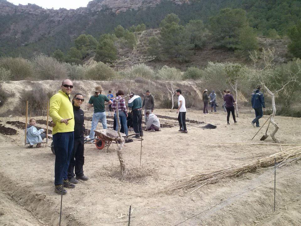 huerto005 - Huertos Solidarios en Fuente de Columbares