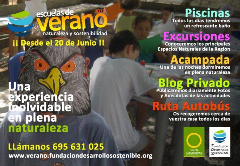 CartelEscuelaVerano2016