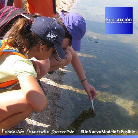 biodiversidadmarina - Propuestas Didácticas