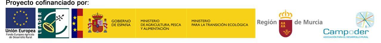 Logos WEB HORIZONTAL - La Fundación Desarrollo Sostenible presentará el primer Filtro Verde con fines didácticos de la Región de Murcia