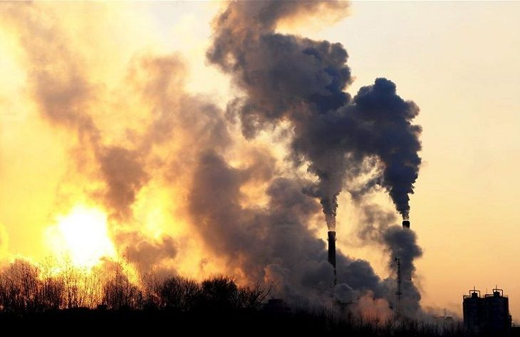 PNCM 205  - Lluvia de millones para entidades locales que promuevan una economía baja en carbono