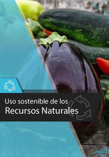 Uso sostenible de los Recursos Naturaleza