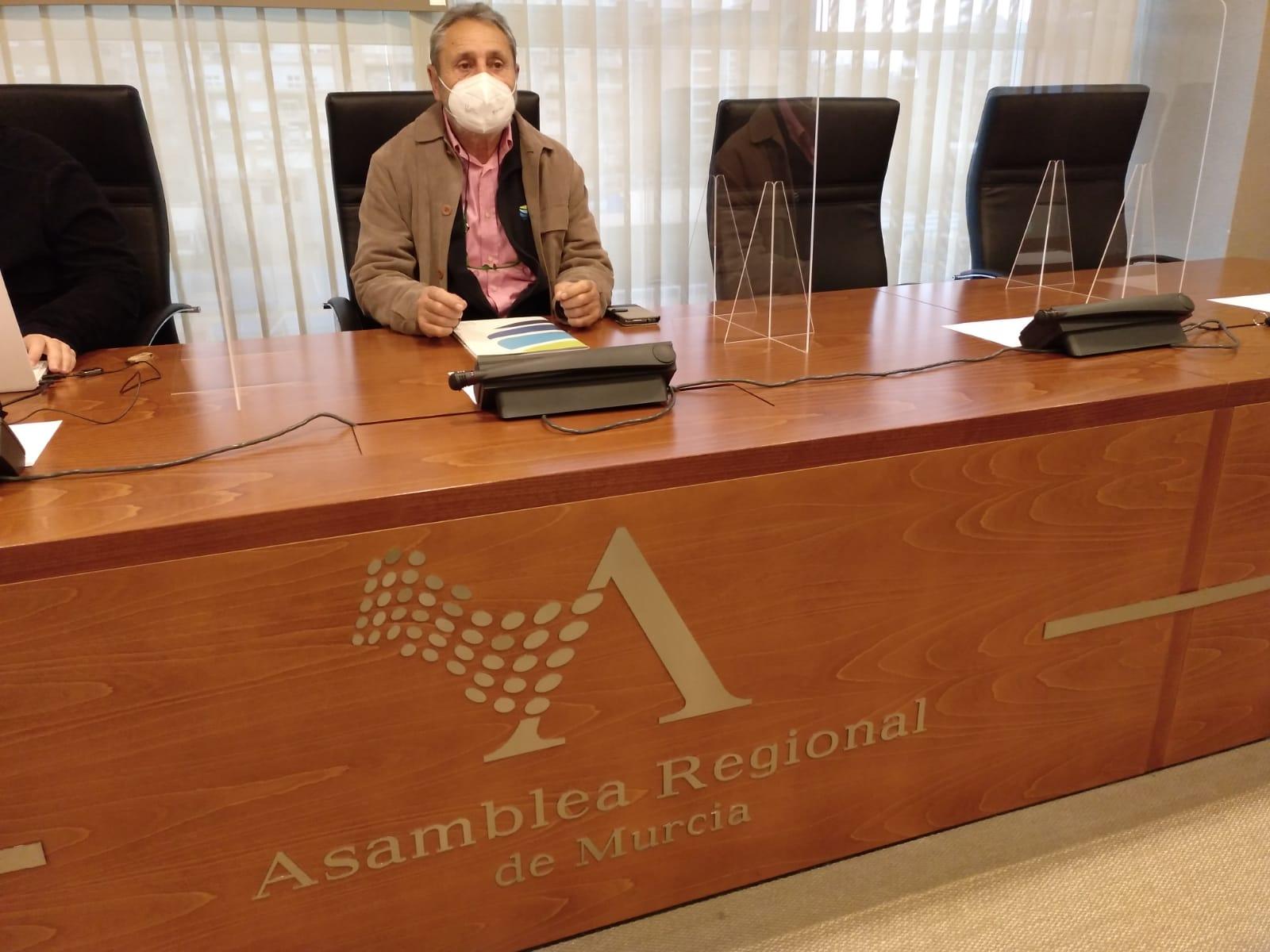 ARM 2021 FDS 01 - La Fundación Desarrollo Sostenible comparece en la Asamblea Regional para impulsar las pequeñas instalaciones de Autoconsumo Renovable, el Vehículo Eléctrico y la lucha contra la Pobreza Energética